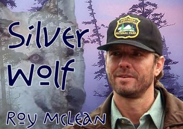 Silver Wolf artwork created by Tarlan