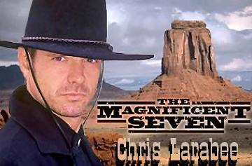 The Magnificent Seven artwork created by Tarlan